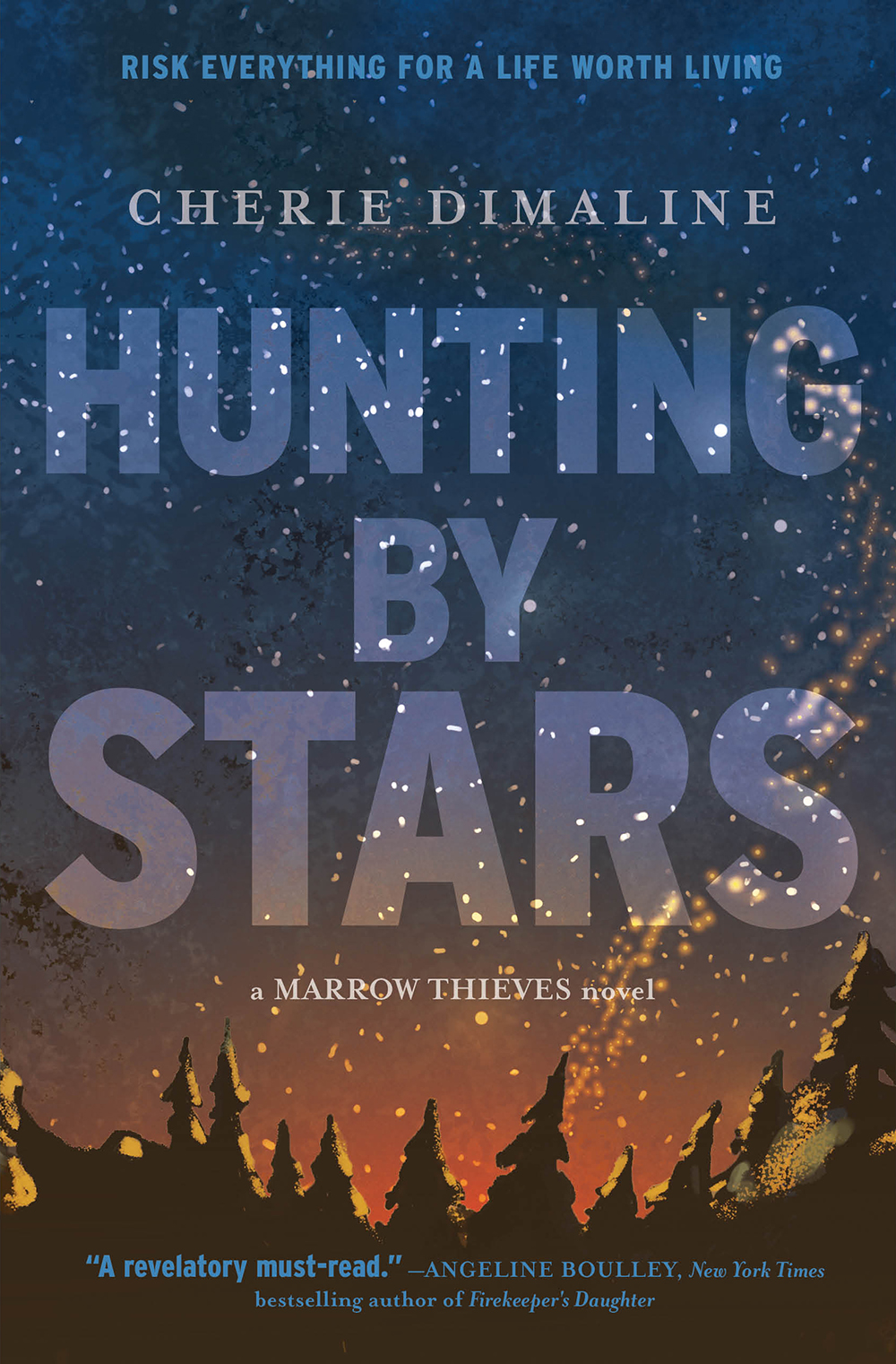 the book cover has a night sky filled with stars and the tips of tall evergreen trees. It seems there are also sparks from a fire rising from the ground near the trees.
