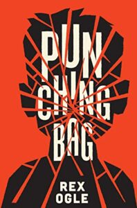 The book cover has a silhouette of a young person. The image is shattered along with the title.