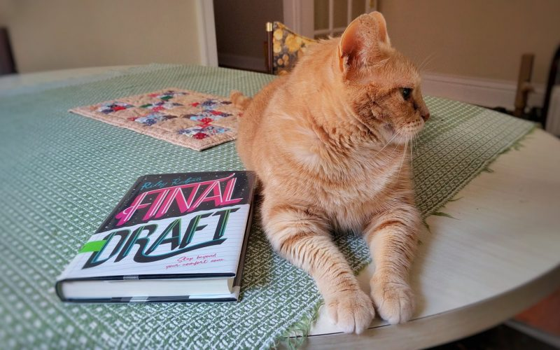 Final Draft by Riley Redgate (and cat)